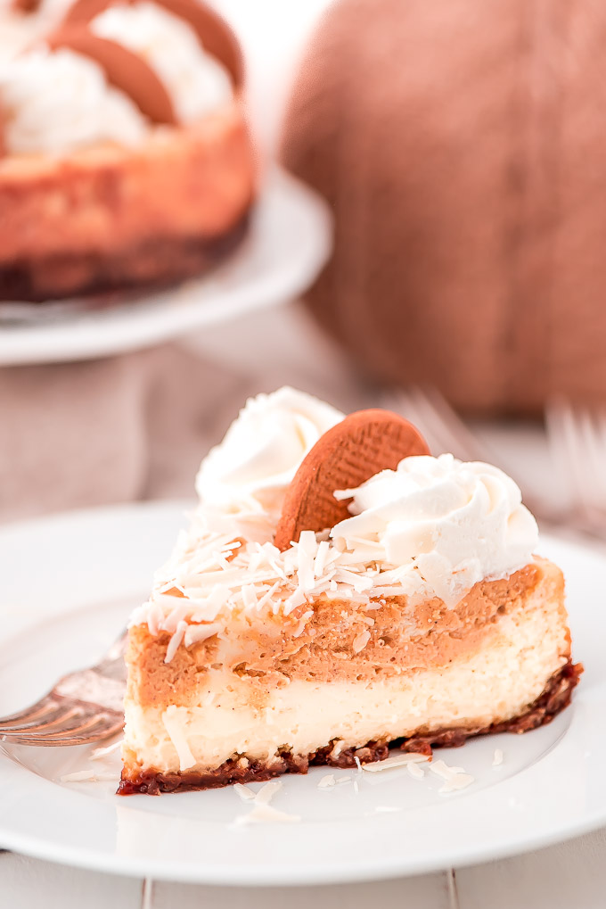 With a silky smooth texture, elegant chocolate shavings, whipped cream, and a gingersnap crust everyone will be making room for dessert when they see this White Chocolate Pumpkin Cheesecake.