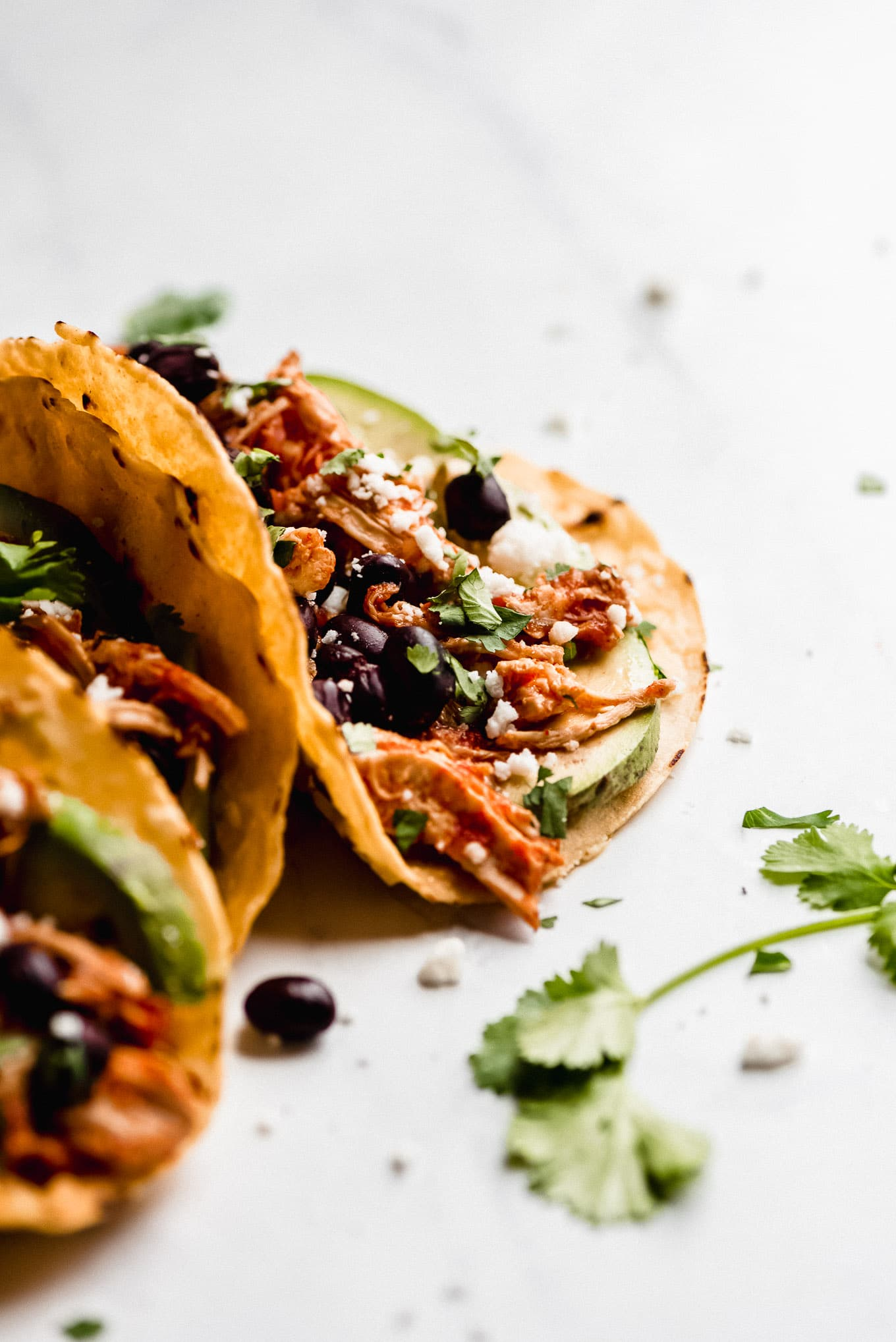 Salsa Chicken Taco in a corn tortilla shell with black beans, avocados, Queso fresco, and cilantro.