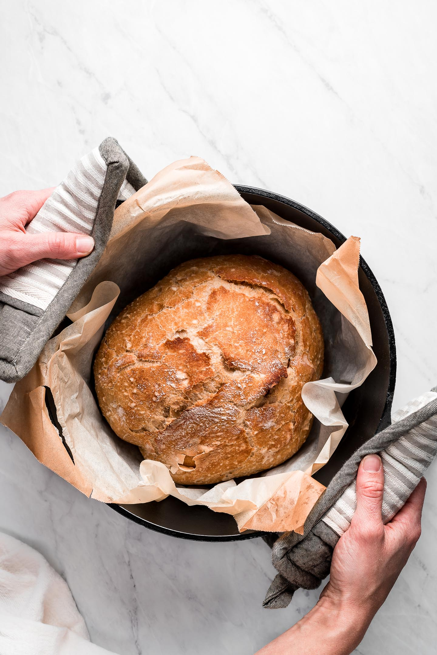 A loaf of No-Knead Bread in a Dutch oven pot.